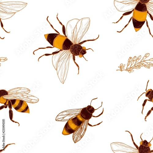 Cotton fabric Seamless pattern with honey bees and acacia plant branches on white background. Backdrop with honeybees. Colorful hand drawn vector illustration in vintage style for wrapping paper, textile print.