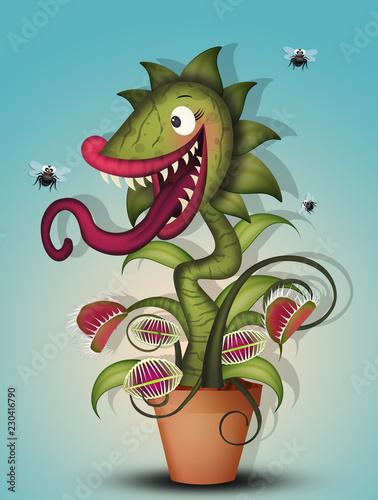 Fotografie, Obraz  carnivorous plant