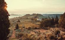 Sunrise Over Fields Of Tuscany...