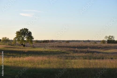 Foto op Aluminium Blauwe hemel Farm Field