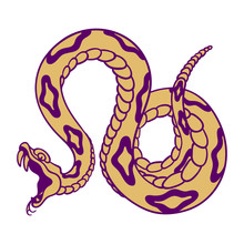 Rattlesnake Hand Drawn Vector ...