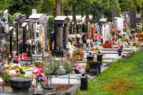 Fotografija  Eine Gräberreihe auf dem Zentralfriedhof in Wien