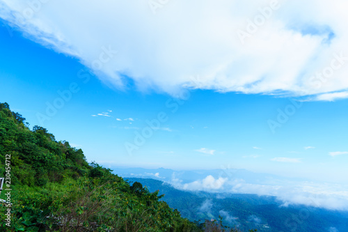 Blue sky and cloud with meadow tree. Plain landscape background for summer poster of thailand.