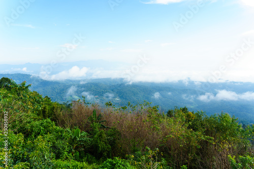 Tuinposter Pool Blue sky and cloud with meadow tree. Plain landscape background for summer poster of thailand.