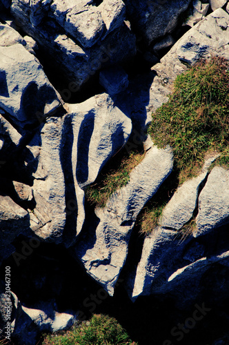 Glacial striations in the Pizol bedrock, Swiss Alps Fototapet