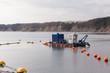 canvas print picture - Sand dredger boat
