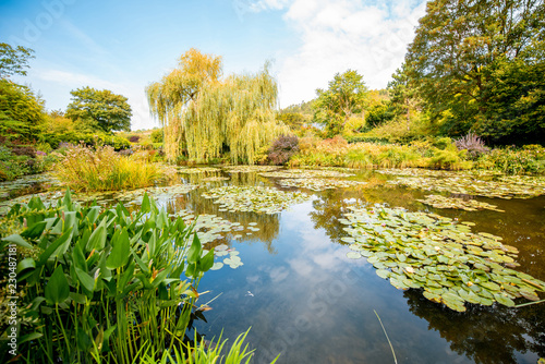 Foto  Landscape view on the beautiful Claud Monet's lake with lilies, famous french im