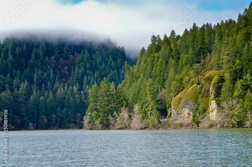 Fotografie, Obraz  Loon Lake - East Shore Recreation Area