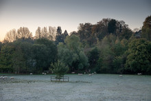 Frosty Autumn Morning With She...
