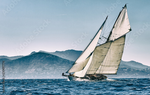 Canvas Print Sailing yacht regatta. Yachting. Sailing