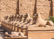 Statue Of Sphinx In Temple Of Luxor Egypt