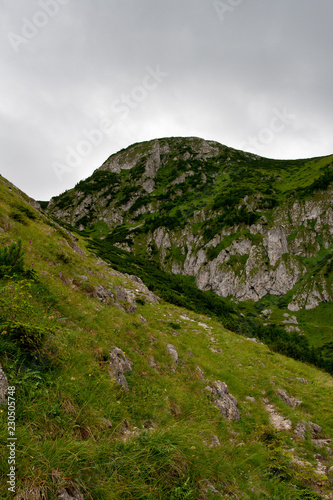 Staande foto Bleke violet Tatra mountains