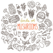 Mushrooms Doodles Set. Hand Drawn Vector Illustration Isolated On White Background