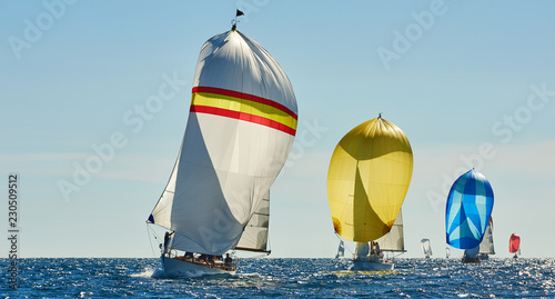 Sailing yacht race. Yachting. Sailing. Regatta