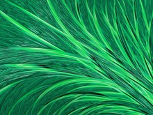 Abstract Textured Green Fractal Lines, Artwork For Creative Art, Design And Entertainment. Background For Brochure, Website, Flyer Design.