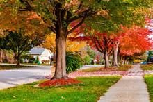 Suburban Neighborhood Sidewalk And Street In Autumn