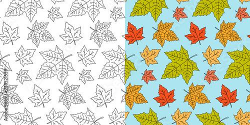 Fotografie, Obraz Autumn maple leaf seamless pattern