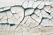 Cracked Earth Close Up