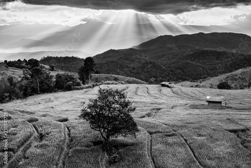 Foto op Canvas Grijs Black and White landscape