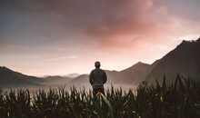 Silhouetted Man Standing On The Field In Sunset With Mountain Background