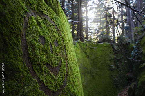 Valokuva  painted smile on the mossy stone in the woods