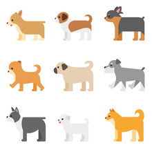 Various Kind Of Dog Breed Set. Flat Design Style Vector Graphic Illustration.