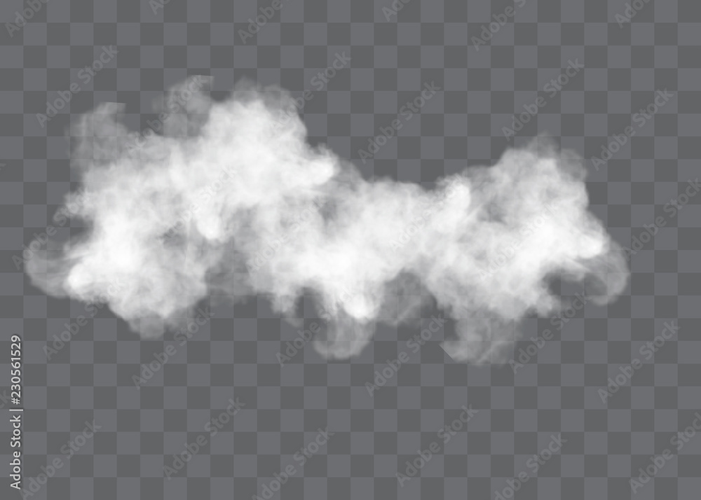 Fototapety, obrazy: Transparent special effect stands out with fog or smoke. White cloud vector, fog or smog.