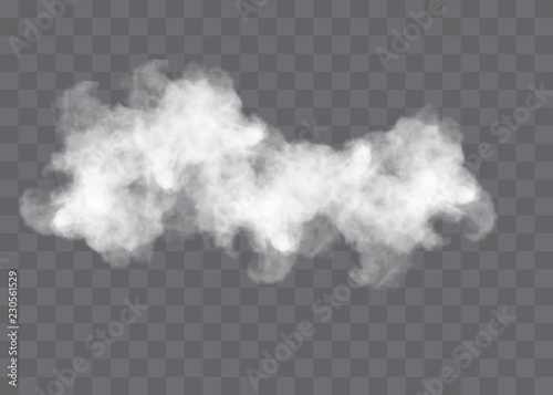 Transparent special effect stands out with fog or smoke Fototapet