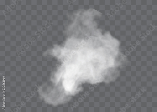 Poster Fumee Transparent special effect stands out with fog or smoke. White cloud vector, fog or smog.