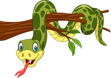 Cartoon Green Snake On Tree Branch