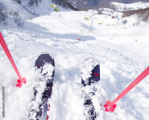 alpin ski sport