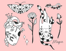 Hand Drawn Various Magic Objects. Traditional Tattoo Style. Graphic Vector Set. All Elements Are Isolated