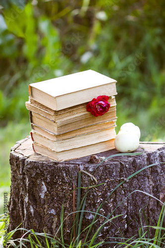 Foto op Plexiglas Retro Vintage card with stack of old books and rose flower outdoors