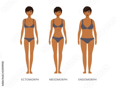 Photo Human body types. Women as endomorph, ectomorph and mesomorph.