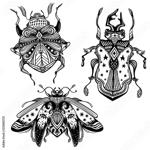 Magic beetles and bugs set. Fantasy ornate insects for design. Canvas Print