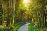 Fototapeta Bamboo - Wangjiang Pavilion in Wangjianglou park. Chengdu, Sichuan, China