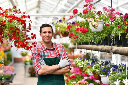 Fototapeta smiling gardener at work in a greenhouse // Portrait lächelnder gärtner bei der