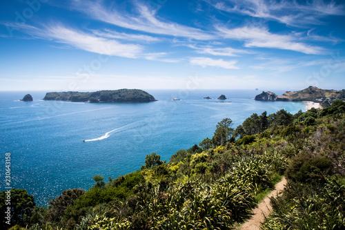Stampa su Tela Scenic view of Coromandel Peninsula in New Zealand