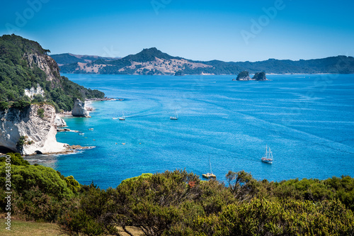 Foto op Plexiglas Cathedral Cove Scenic view of Coromandel Peninsula in New Zealand