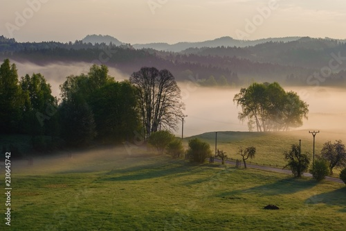 Spoed Foto op Canvas Beige Autumn landscape with mist