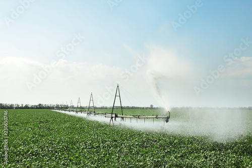 Field with irrigation system on sunny day