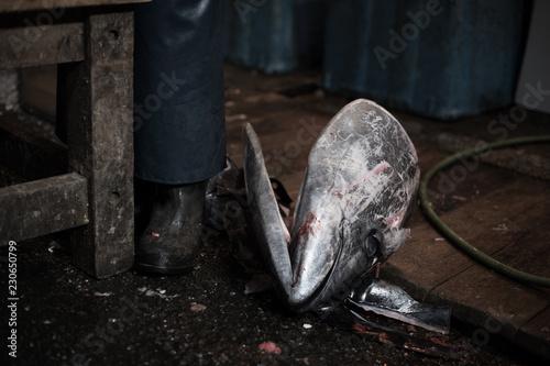 Fotografie, Obraz  Tsukiji Fish Market