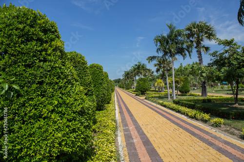 Fotografia, Obraz  Stone Pathway in the Green Park