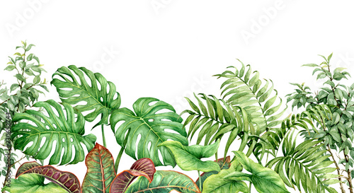 Cotton fabric Watercolor Tropical Plants Seamless Border