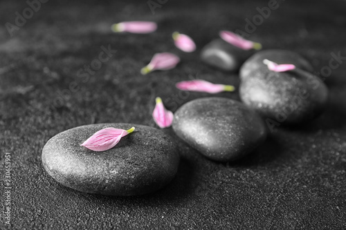 canvas print motiv - New Africa : Spa stones and flower petals on dark background