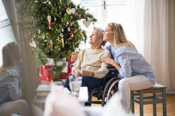 Fototapeta A senior woman in wheelchair with a health visitor at home at Christmas time.