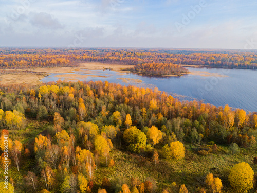 Aerial view over forest during vibrant autumn. Aerial view of seashore with stone. Coastline with sand and water. Aerial drone view of forest with yellow trees and beautiful lake landscape from above