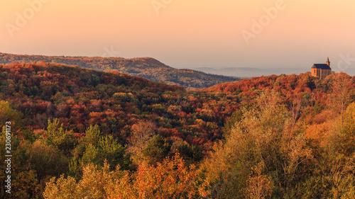 Fotografie, Obraz Autumn in Bavaria, golden fall colors in the morning