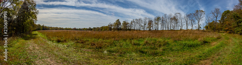 Slika na platnu Wilson's Creek Battlefield