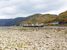 Niedrigwasser Am Rhein, Mittelrheintal Bei Assmannshausen, Das Stark Ausgetrocknete Flussbett Mit Weinbergen Im Hintergrund